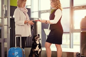 passenger with dog at baggage drop off